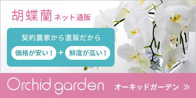 オーキッド・ガーデンSPバナー